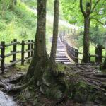 三段の滝 岩見沢と富良野を結ぶ道路脇に・・
