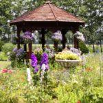 2021年7月の紫竹ガーデン